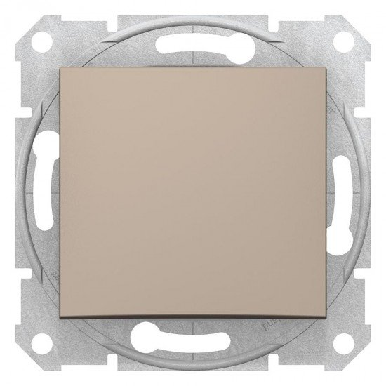 Еднополюсен ключ, титан (механизъм+монт. рамка)