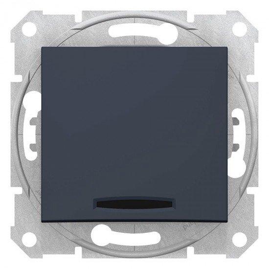Еднополюсен ключ, сигнална лампа, графит (механизъм + монт. рамка)